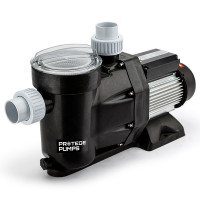 PROTEGE 1200W 1.6HP Self-Priming Swimming Pool and Spa Pump Filter