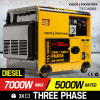 7,000W Three-Phase Diesel Generator - TXS14000D Series III
