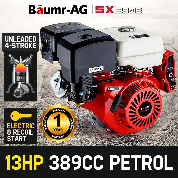 13HP Petrol Stationary Engine OHV 4 Stroke Horizontal Shaft Electric Start Motor by Baumr-AG